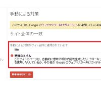 Search Console 手動による対策